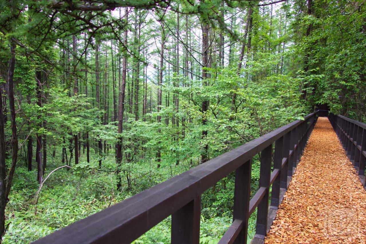 六花山荘の橋