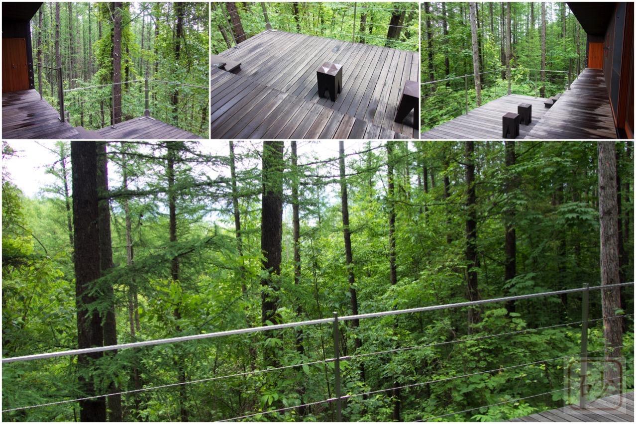 六花山荘テラスからの風景
