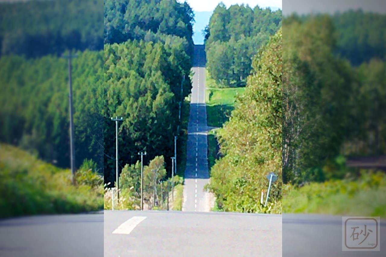 就実の丘 すごい写真が撮れました【旭川市】