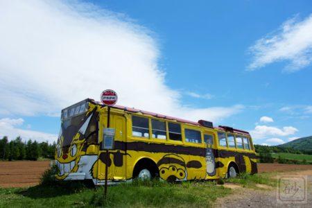 トトロ(戸外炉)峠にねこバスを見に行く!めぇーいちゃーん【深川市】