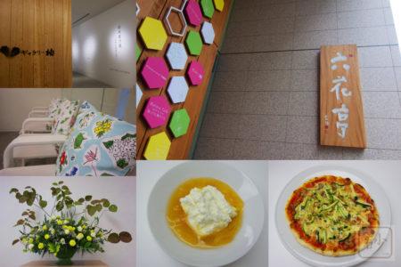 六花亭札幌本店 喫茶室とギャラリー柏で坂本直行展