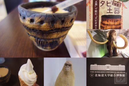 北大博物館 土器でタピオカミルクティーを飲む!【タピ土器】